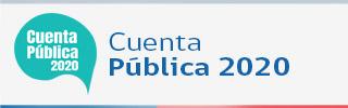 Presentación Cuenta Pública Consejo Consultivo Gestión año 2020